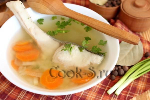 Рецепты приготовления толстолобика: лучшие блюда из рыбы