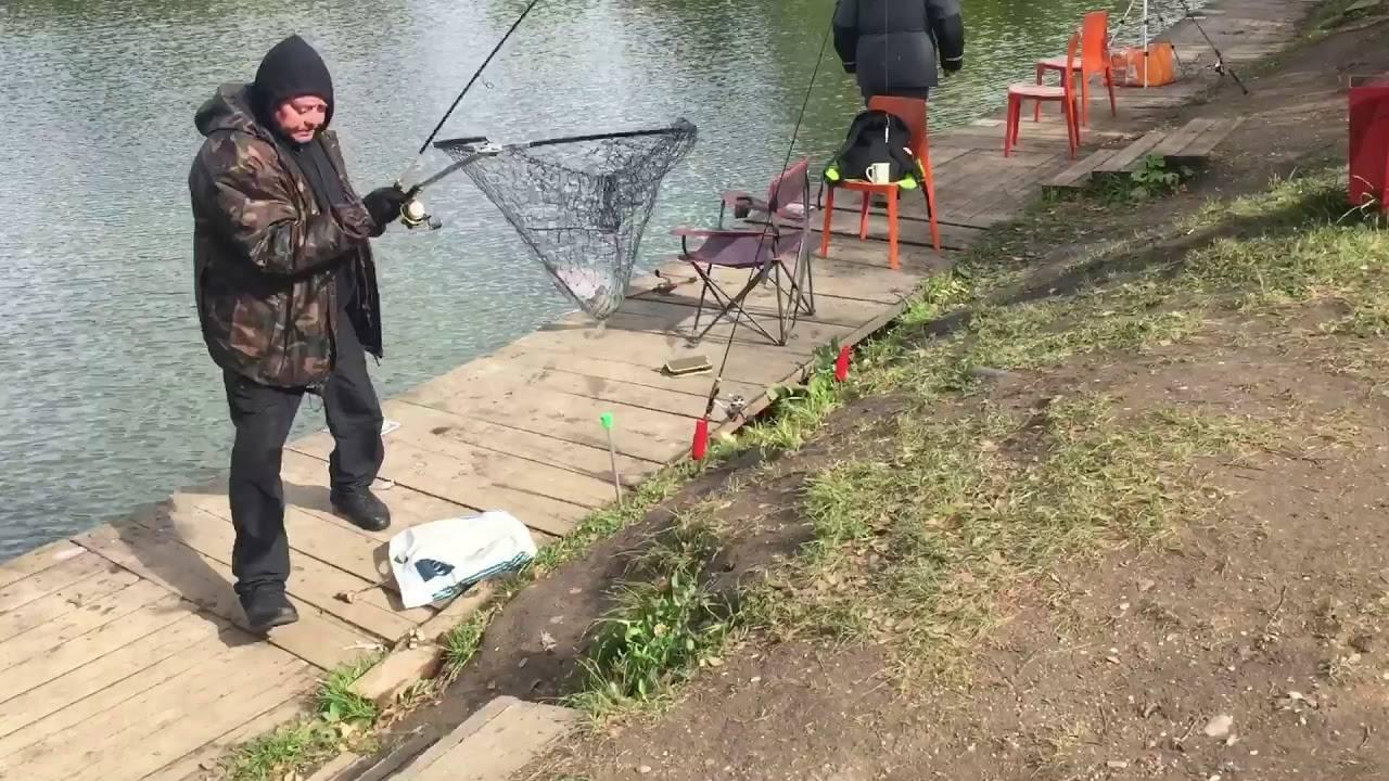 Рыбалка в дмитровском районе — подмосковье, реки, озера, водохранилища и лучшие базы отдыха, отзывы
