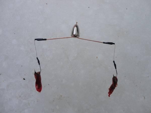 Зимний лещ на коромысло: снасть и техника ловли - читайте на сatcher.fish