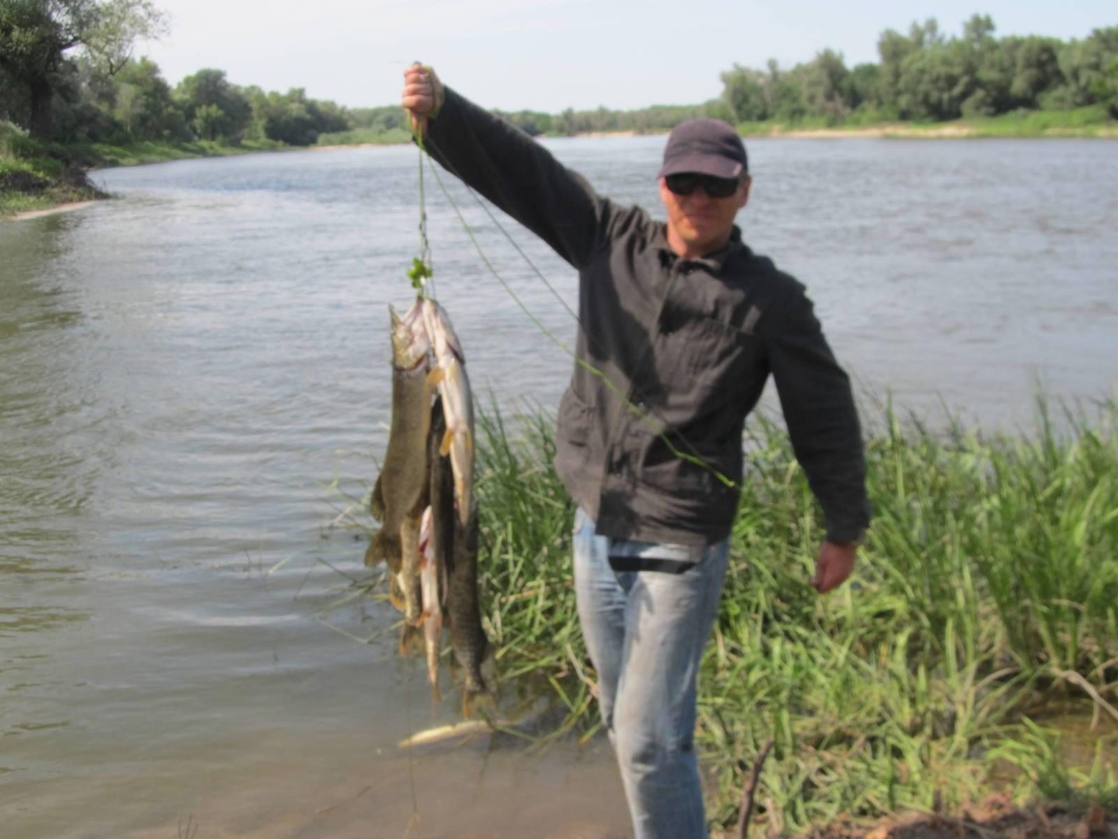 Рыбалка на дону в воронеже и воронежской области, в районе шилово и щучьем видео