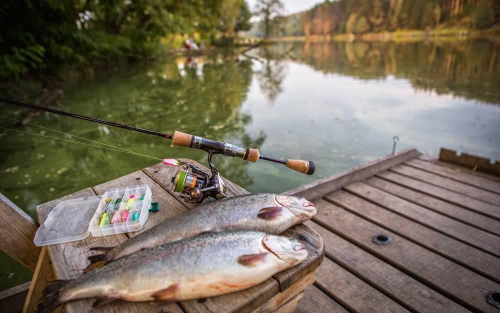Жители карелии боятся есть рыбу после взрыва под северодвинском