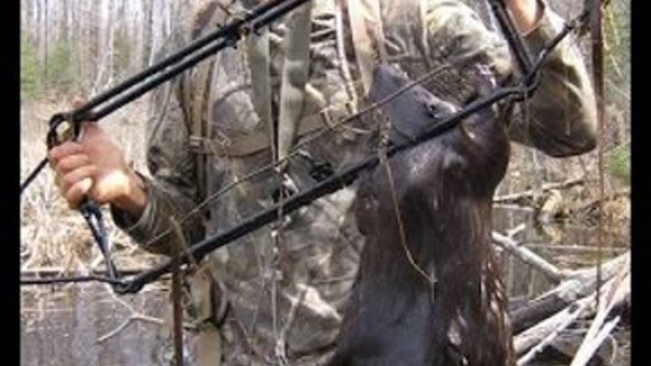 Охота на бобра с капканами летом, осенью, зимой (в тч проходными) + видео