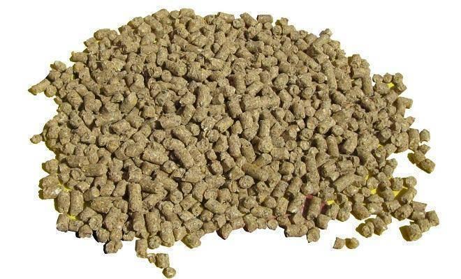 Каким комбикормом кормить несушек: заводским или самодельным