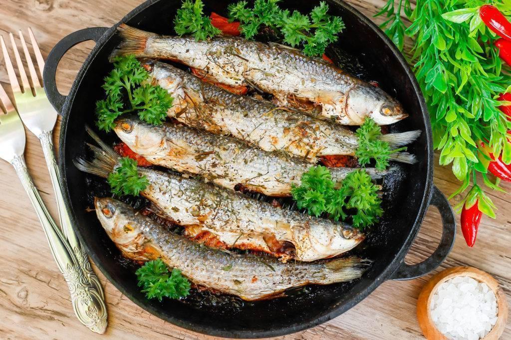 Загадочная рыба линь: как распознать, поймать и приготовить