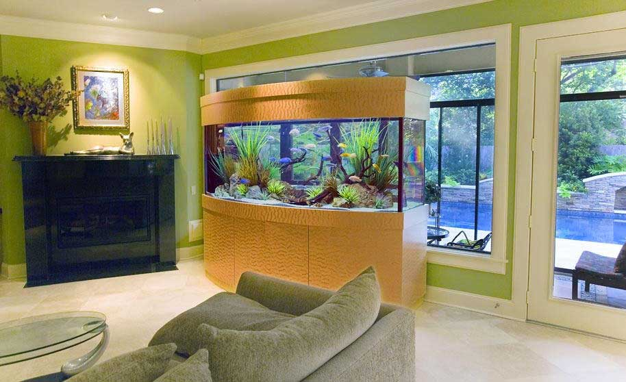 Какой лучше выбрать аквариум для начинающих