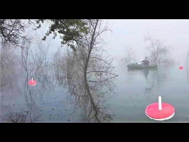 Ловля щуки на кружки весной, летом и осенью - рыбачок!сайт рыбачок