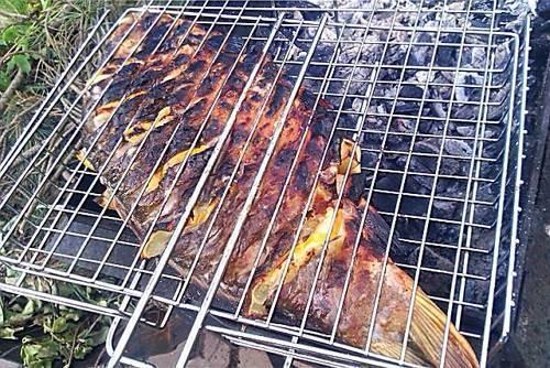 Скумбрия на костре: как приготовить на решетке, с чем замариновать, рецепты запеченной рыбы