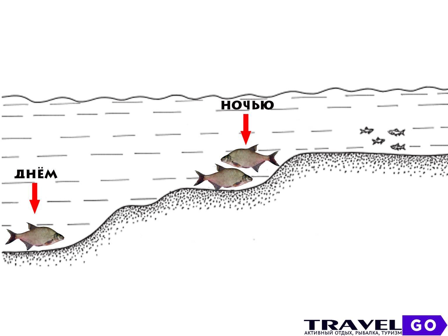 ?рыбалка фидером на реке с быстрым течением