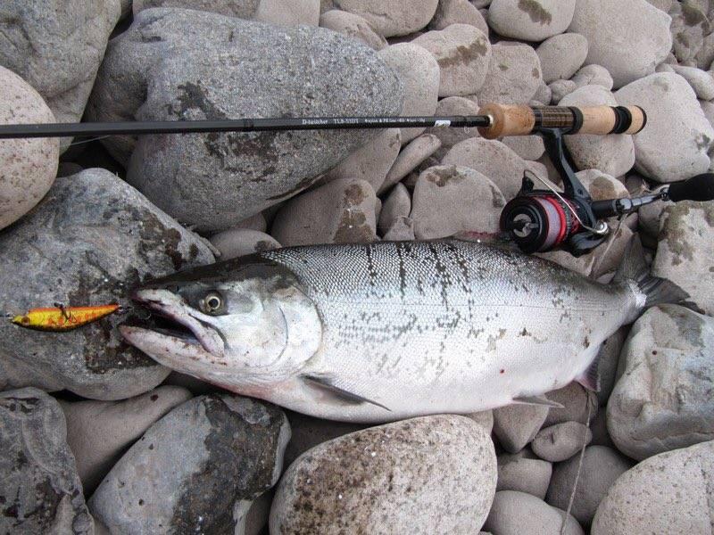 Рыбалка на камчатке - про рыбалку