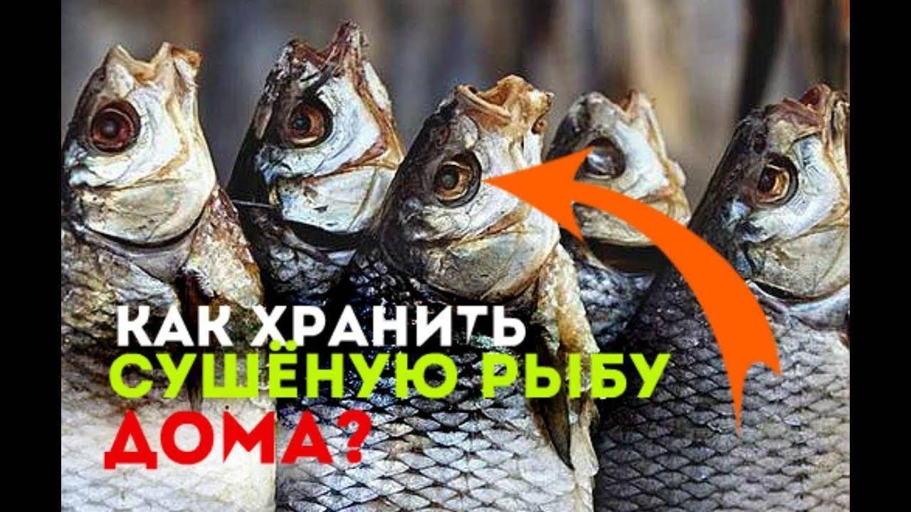 Вяленая рыба – 7 способов вяления рыбы и правила ее хранения