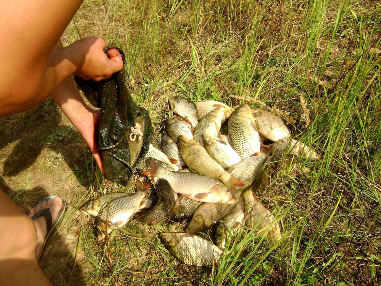Рыбалка в орловской области – обзор водоемов