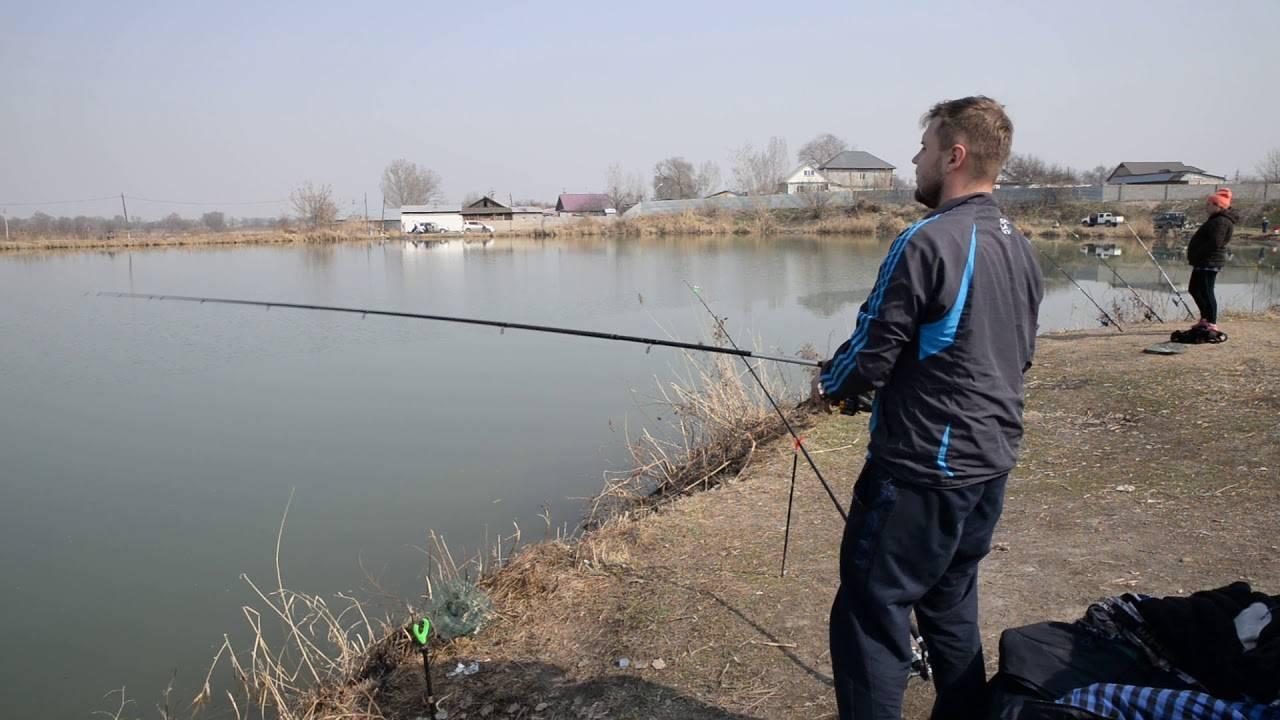 6 мест и рыбных хозяйств недалеко от алматы - статьи, истории, публикации | weproject