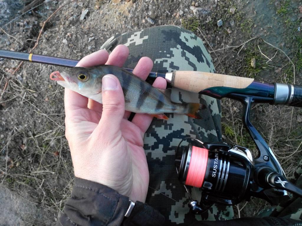 Ловля на джиг для начинающих, рыбалка на джиг с берега