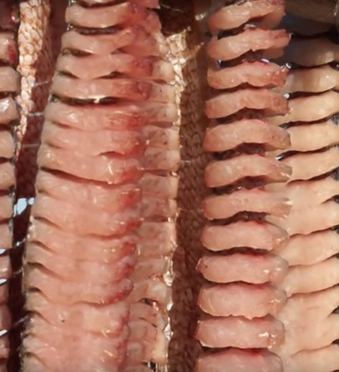 Классический рецепт юколы из щуки, валеная юкола из щуки с солью и пряностями