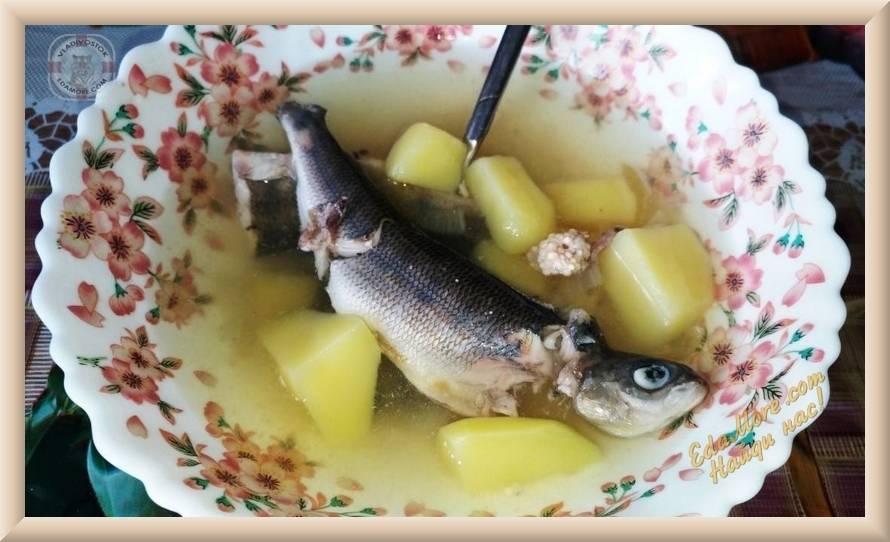 Как солить хариуса – рецепты засолки