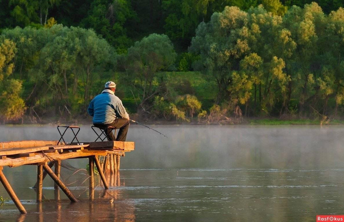 Рыбалка в саратовской области - читайте на сatcher.fish