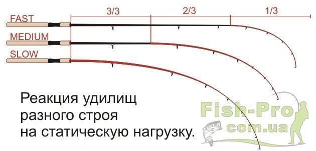 Как выбрать фидерное удилище и катушку для начинающих? фидерное удилище для ловли карпа