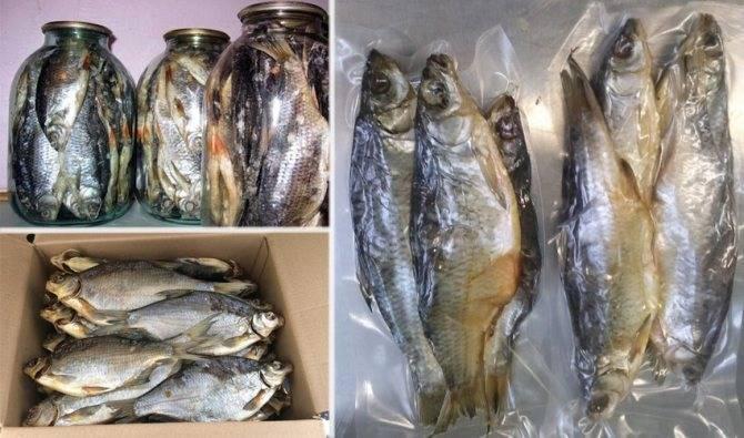 Вяленая рыба – рецепты, как вялить рыбу в духовке или на морозе и хранить в домашних условиях