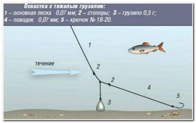 Тактика и техника рыбалки на поплавок и сборка удочки тактика и техника рыбалки на поплавок и сборка удочки