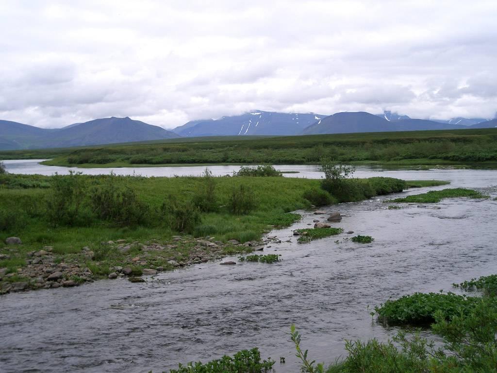 Озеро большое чебачье в казахстане (үлкен шабақты)