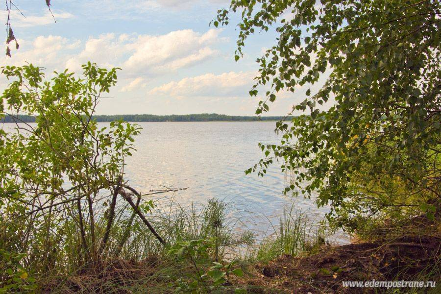 Белое озеро — и отдых и рыбалка - рыба