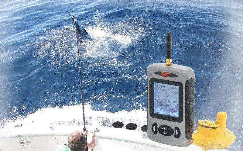 Лучшие эхолоты для рыбалки
