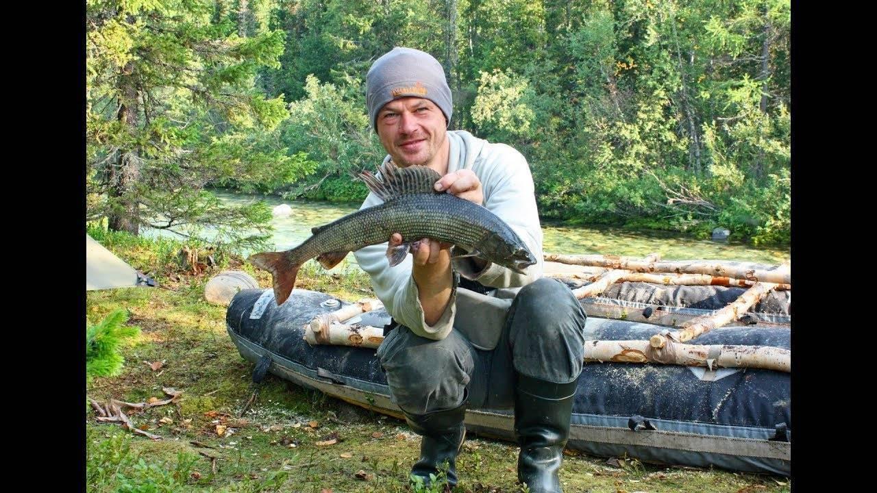 Байкальский хариус: описание, характеристика, где водится и на что ловить