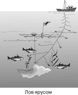 На что лучше клюет рыба