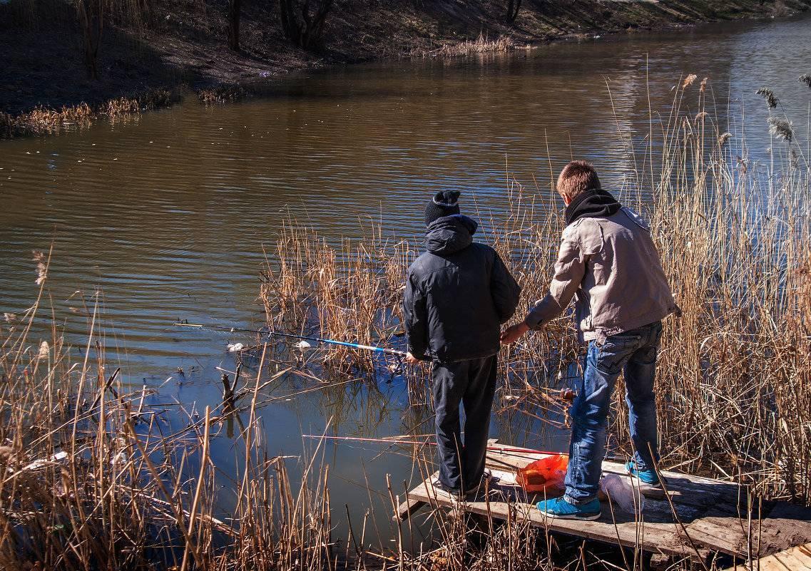 Ловля щуки в мутной воде: поиск, приманки, техника ловли