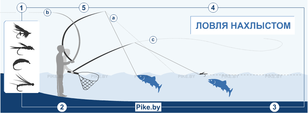 ✅ рыбалка нахлыстом для начинающих - https://xn----7sbeepoxlghbuicp1mg.xn--p1ai/