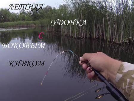 Пример рыбалки с ловлей карпа на боковой кивок (плюс видео)