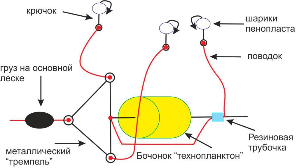 Изготовление технопланктона и ловля толстолобика своими руками