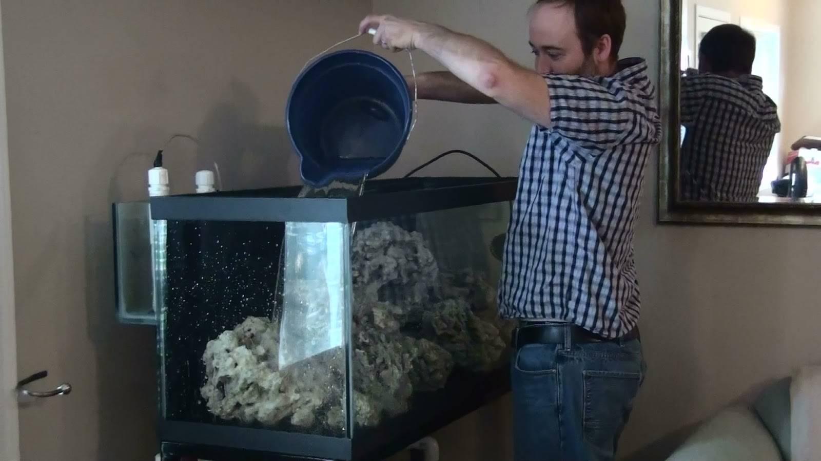 Как часто менять воду в аквариуме: сколько отстаивать воду для аквариума, как менять воду в аквариуме, какую воду заливать в аквариум для рыбок, вода для аквариума