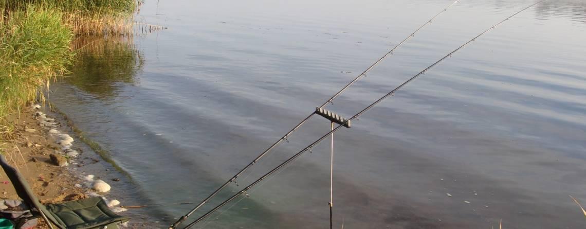 Ловля рыбы фидером — Тактика