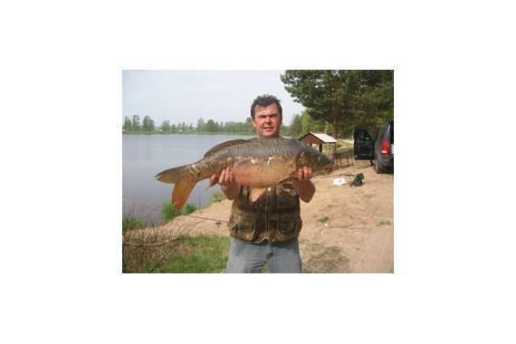 Клинский рыбхоз: форелевый пруд на участке владимировка, ловля в дятлово и новоселово