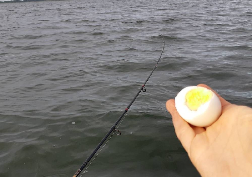 Ловля рыбы в болхунах