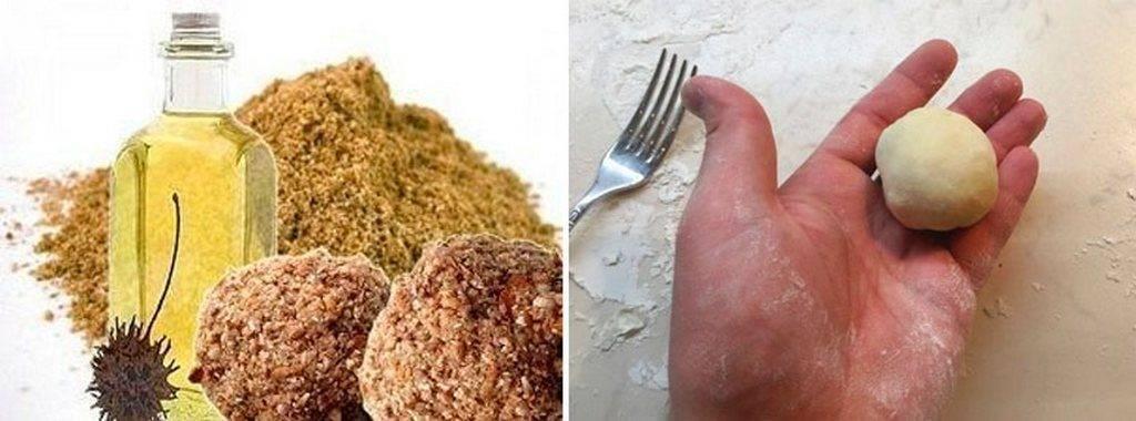 Как сделать тесто на карася, плотву и других карповых