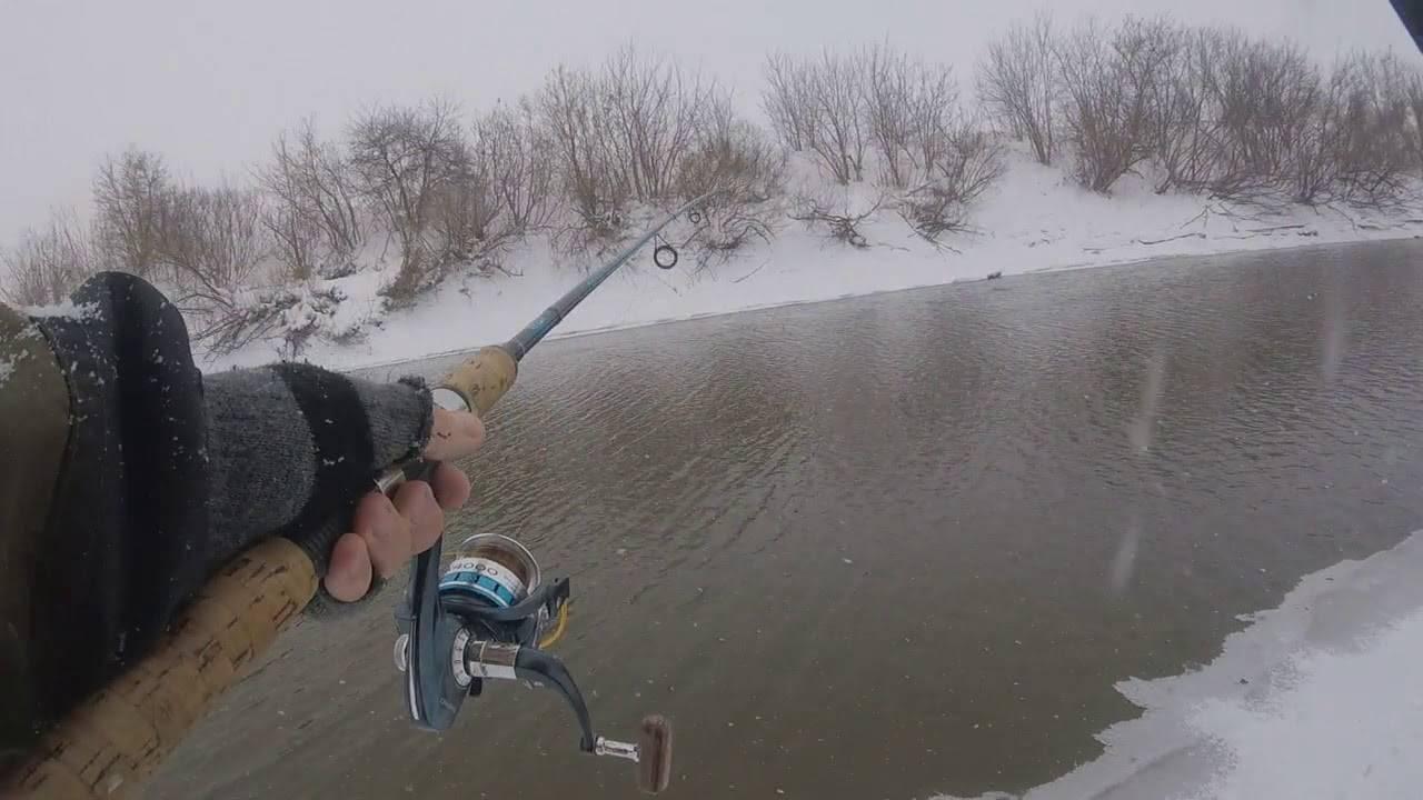 В какое время суток ловить рыбу