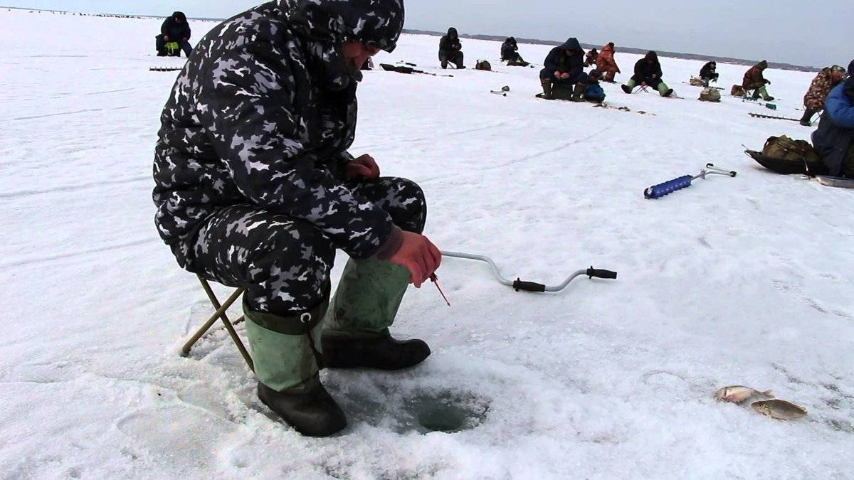 Рыбалка на реке медведица тверская область