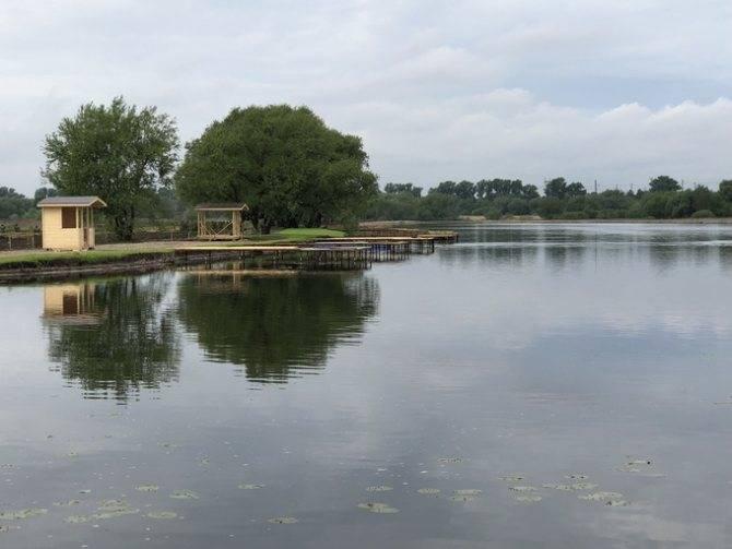 Озеро Лютце превратилось в рыбную ферму под открытым небом
