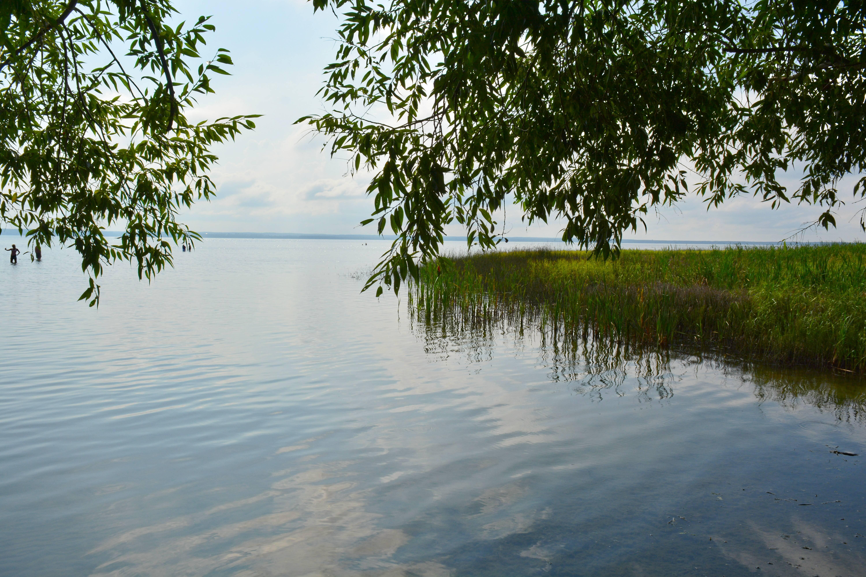 Озеро плещеево: характеристика местности и рыбалки, какая рыба водится в водоеме