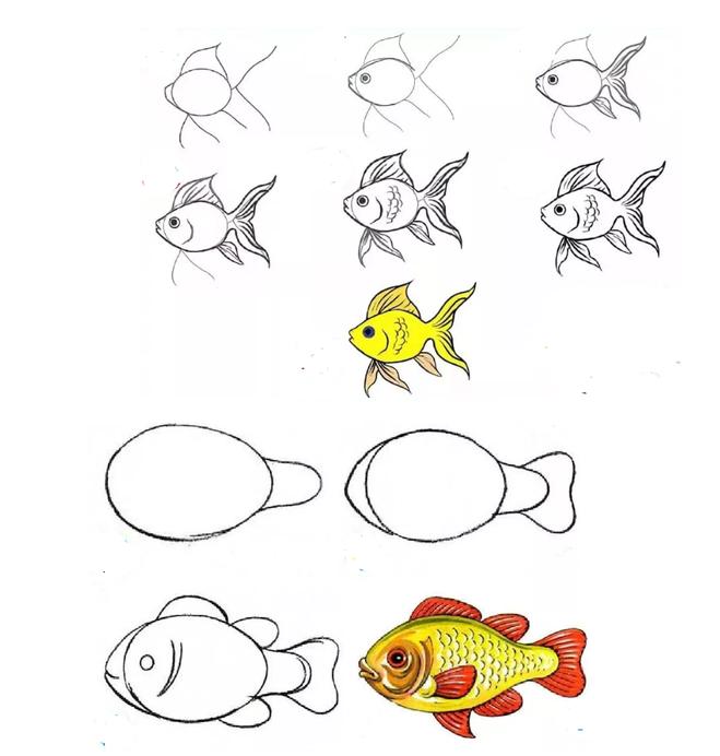 Как рисовать рыбу – учимся рисовать разных рыбок. обсуждение на liveinternet