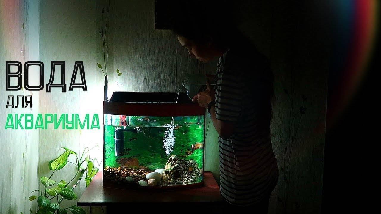 Сколько отстаивать воду для аквариума?