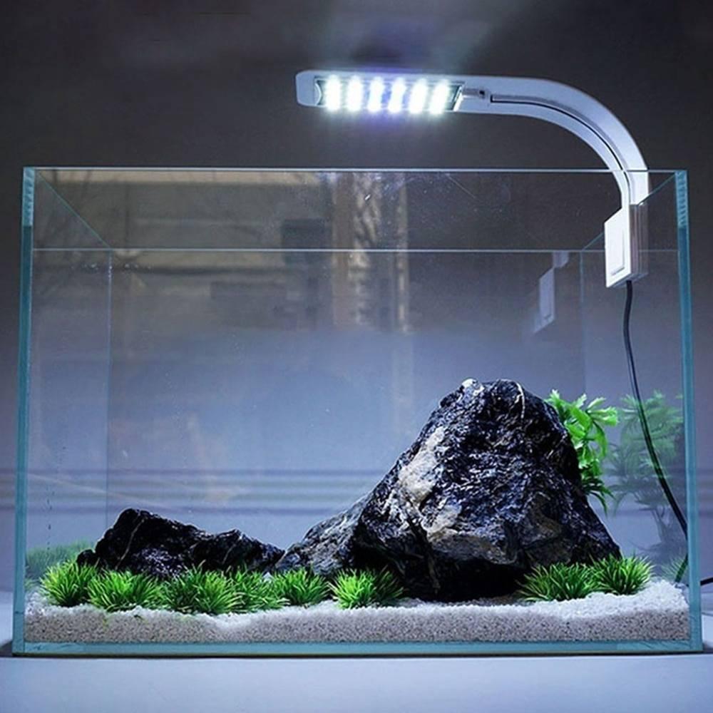 Какой лучше выбрать свет для аквариума и растений