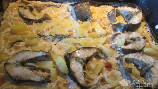 Блюда из осетра рецепты в духовке - простые пошаговые рецепты с фотографиями