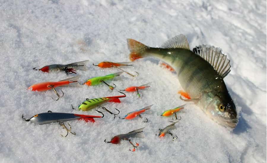 Зимняя рыбалка на окуня с балансиром: уловистые модели, способы игры приманкой, популярные новинки и рейтинг