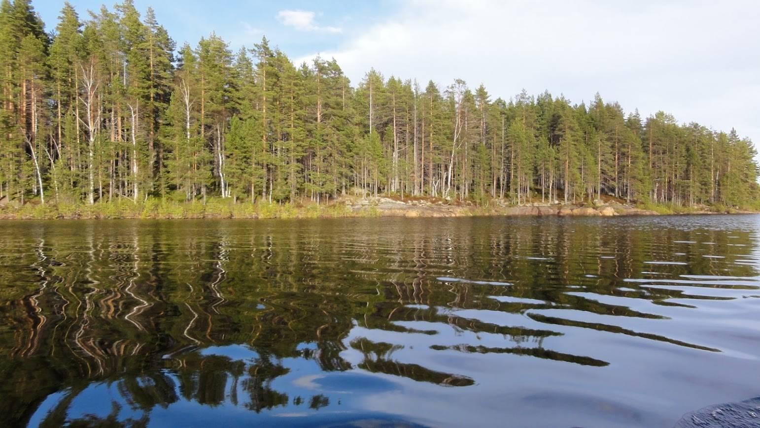 Рыбалка в карелии дикарем — водоемы, снасти, особенности