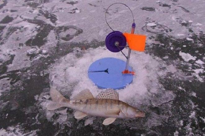 Рыбалка на кольцо со льда зимой