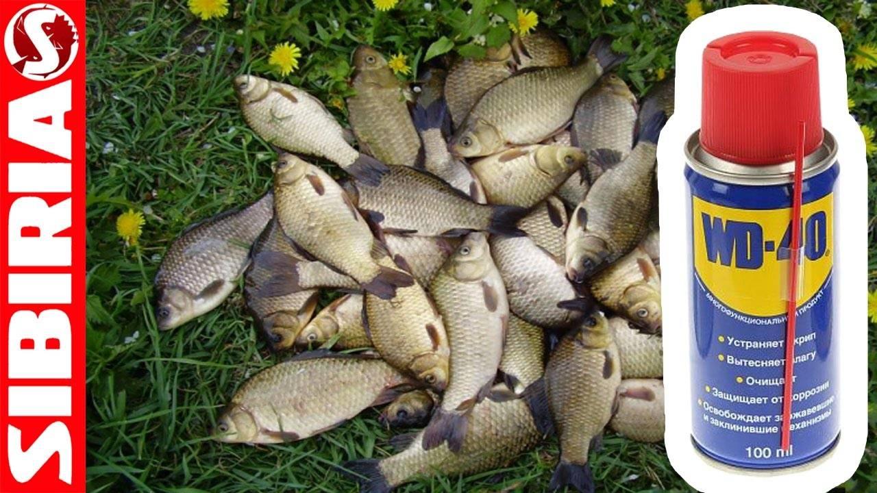 Прикормка для рыбалки. 100% результат. не использовать для браконьерства!