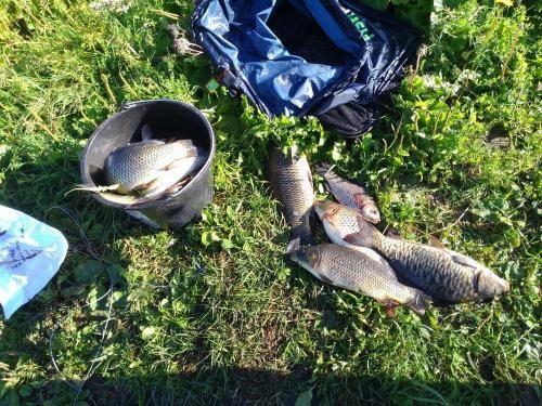 Рыбалка в ольгово отчеты